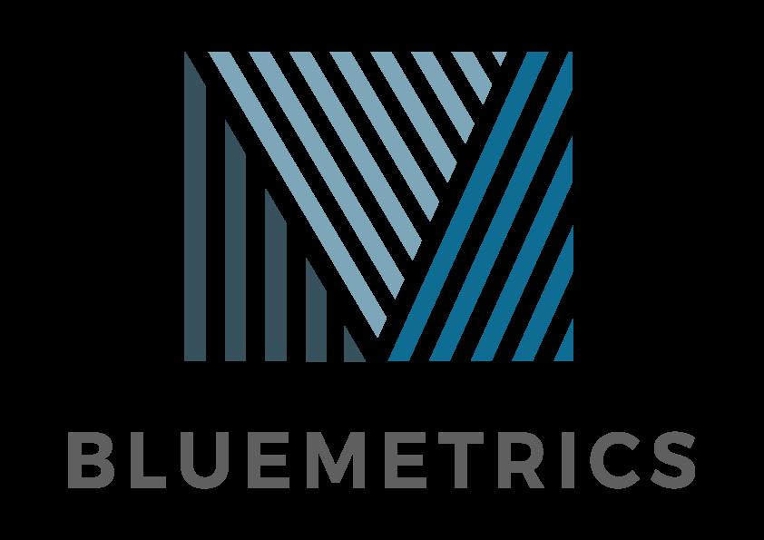 bluemetrics-logo logo