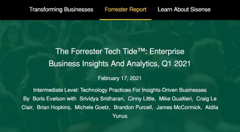 Forrester Tech Target Report Screenshot