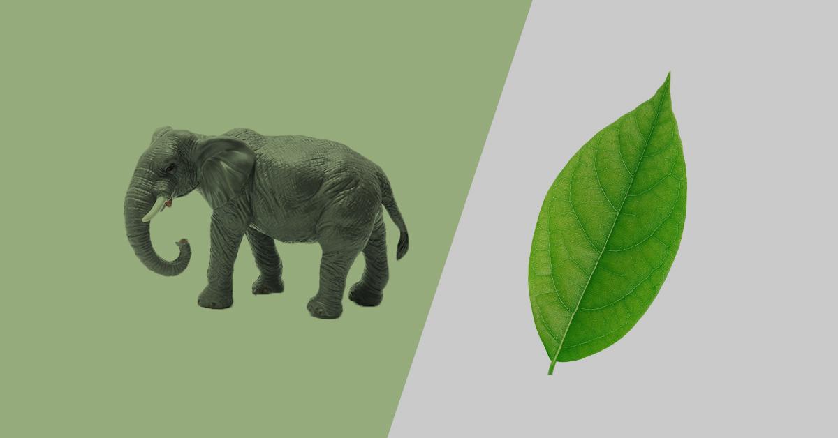postgres vs mongodb