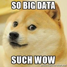 Big Data Dog Meme
